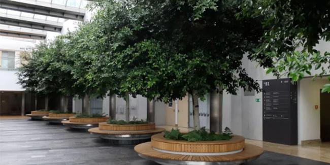 校园标识导视系统——华沙大学
